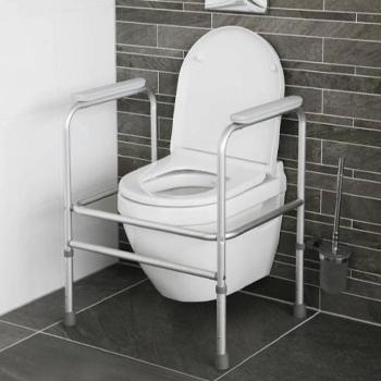 toilet-frame-lead.jpg