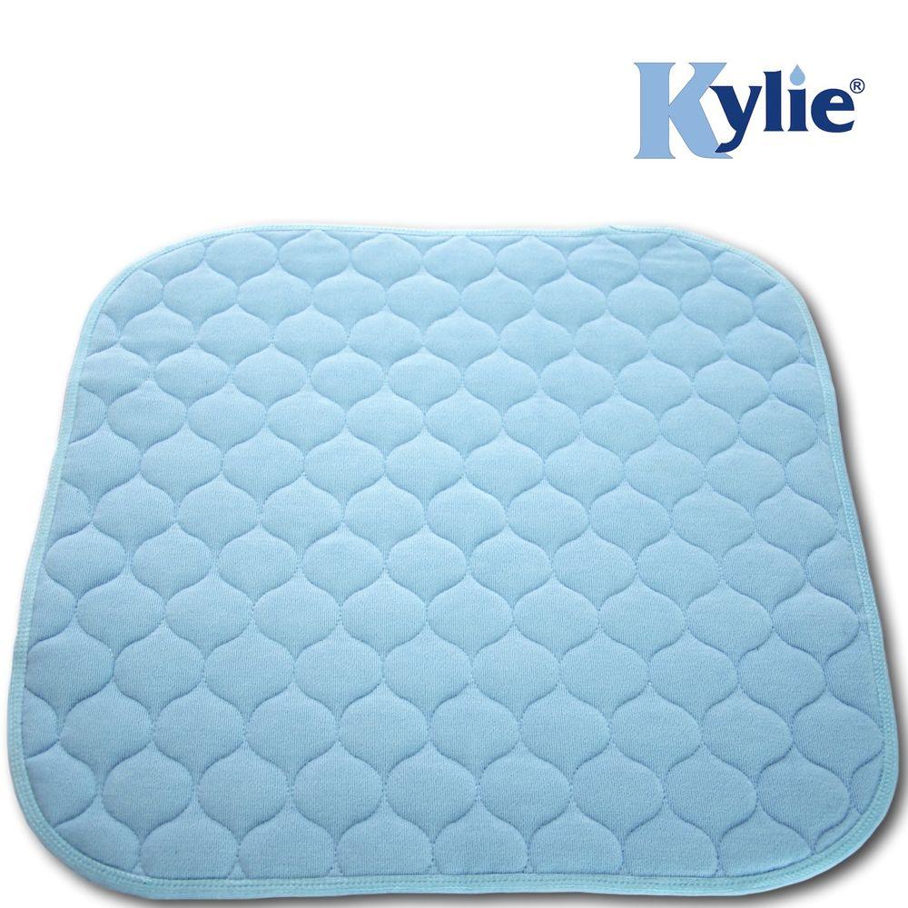 blue-chair-pad.jpg